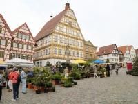 Staudenmarkt am 27. + 28. Mai 2016 auf dem Marktplatz