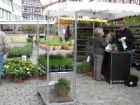 Kräutermarkt auf dem Leonberger Marktplatz
